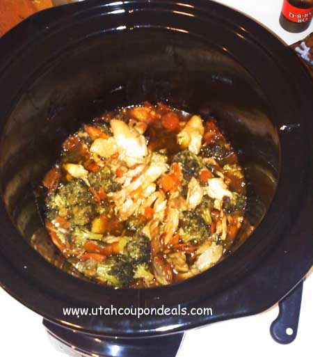 chinese_chicken_veggies_slowCooker_crockPot copy