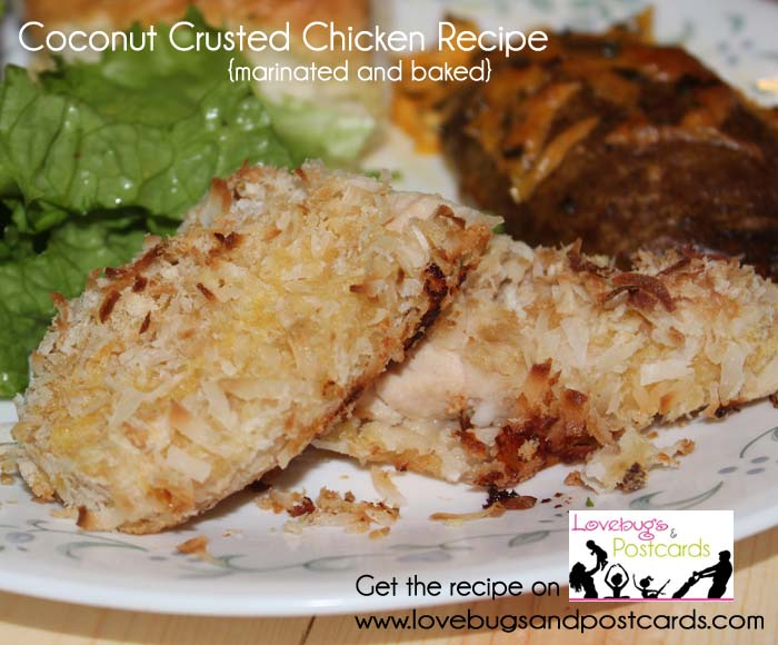 Coconut Crusted Chicken Recipe {marinated and baked}