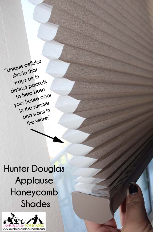 Hunter Douglas Applause Honeycomb Shades