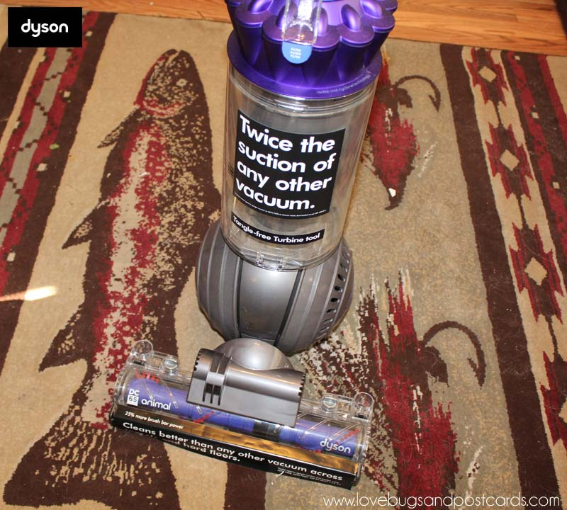 Dyson Animal DC65 Vacuum