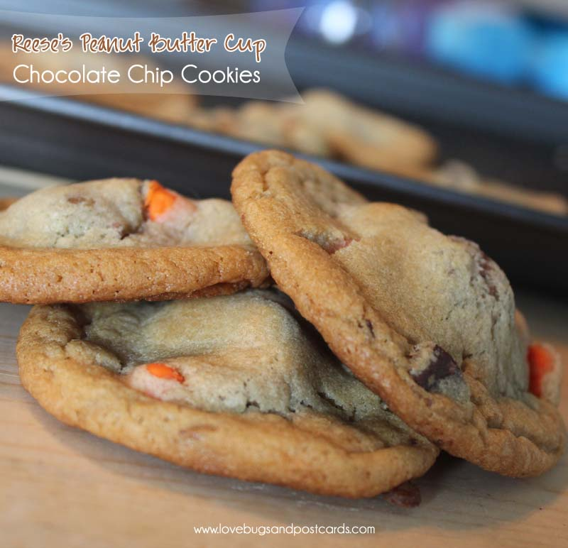 Reese's Peanut Butter Cup Cookies Recipe