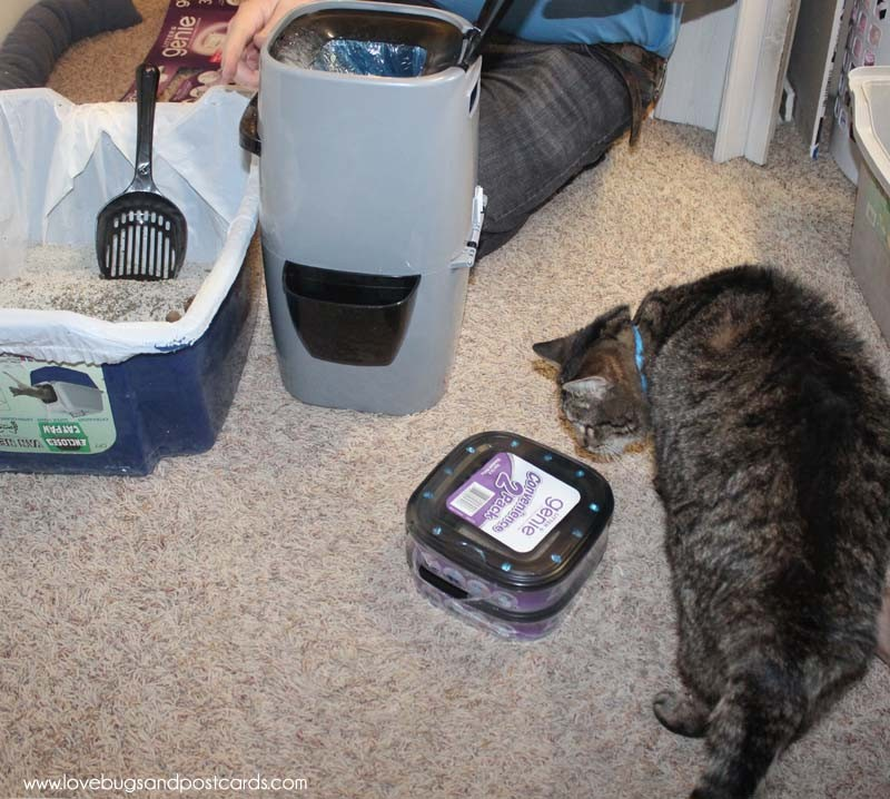 Litter Genie System for Cats