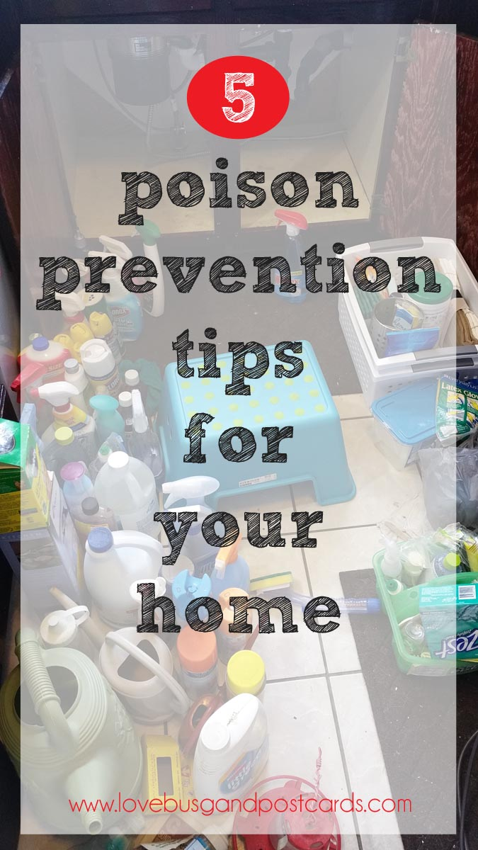 Poison Control Utah >> 5 poison prevention tips for your home - Lovebugs and Postcards