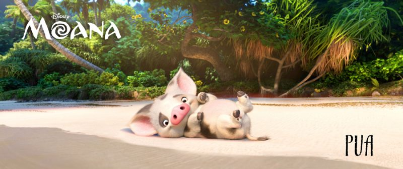 PUA is Moana's loyal pet pig with puppy energy and an innocent puppy brain. ©2016 Disney. All Rights Reserved.
