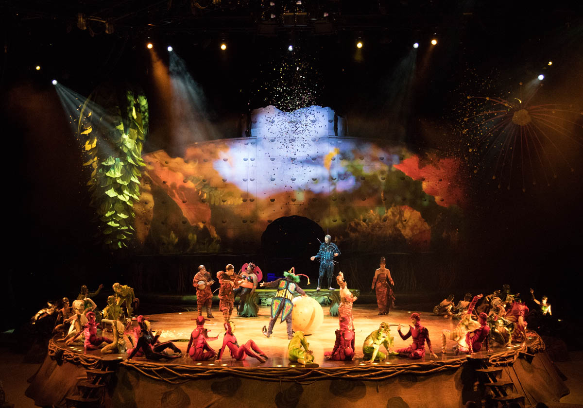 Cirque du Soliel's OVO